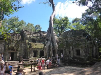 Chrámy pohlcené džunglí